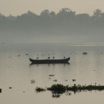 The misty sunrise in the Vembanad