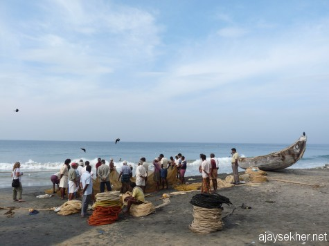 Fishing after Christmas:  Fishers active after Christmas day on the Black Beach, Varkala.
