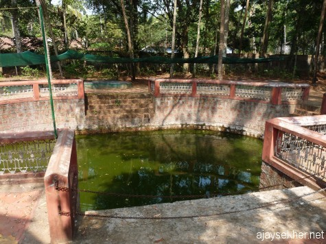Old oval pond in Chaliyam.  Could be an ancient pond and water source.  The British made it part of their railway yard, now protected by the Forest Dept.