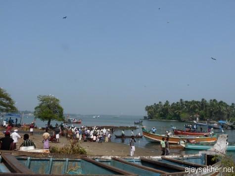 Chaliyam fish landing.  6 Jan 2013