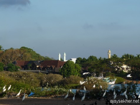 The little Mecca of the south east.  Ponnani was the seat of Islamic learning from AD 8th century onwards.  The congregation of mosques and minarets at the southern bank of the mouth of the Perar.  A view from the shore to south east. 16 feb 2013