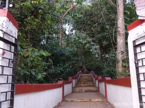 The western gateway of Tozhuvanur Durga temple.  The ancient trees and creepers are still growing in the Kavu or ancient sacred grove in the memory of a nun.