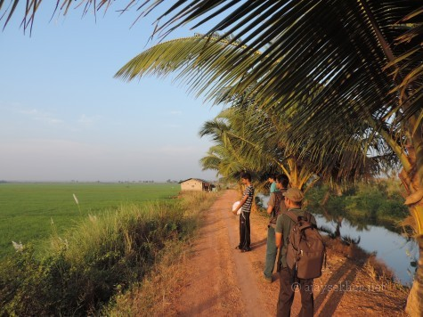 2014 survey team: Subodh and Arjun (KAU-CoF), Riju (KFRI) and Ratheesh Kodungallur in Adat Kol, 5 Jan 2014.
