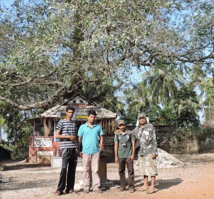 Subodh KAU, Riju KFRI, Ratheesh Kodungallur and me before the Ayanikad Pipal shrine the abode of the birds in Adat Kol, 5 Jan 2014. Photo: Arjun KAU