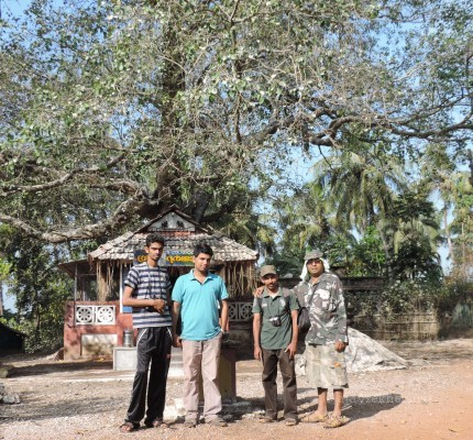 Subodh KAU, Riju KFRI, Ratheesh Kodungallur and me before the Ayanikad Pipal shrine the abode of the birds in Adat Kol, 5 Jan 2014. Photo: Arjun KAU