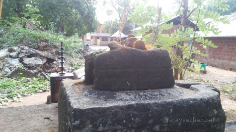 The Buddha fragment at Pattanam Nileeswara temple. Now worshiped as a Naga Yakshi that was recovered from the temple pond. Yet to be acknowledged as a Buddha idol officially.