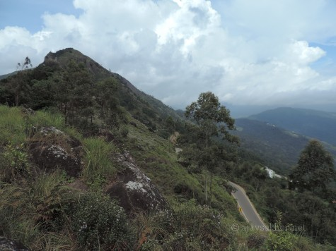 Gap road connecting Munnar with Bodhi Medu and Bodhi Nayakanur in Tamil country.  Kurinji invokes the present and past in south Indian cultural history.