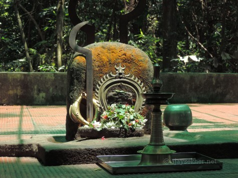An ancient sacred grove or Kavu north of Uliyanur Tevar temple.  Kavu or Kanyakavu is a relic of ancient Sangha Aramas or sacred groves associated with the Buddhist nuns or Kanya Stree, also called Madhatil Amma in olden days.