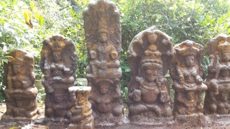 Ancient Naga deities in a Kavu or sacred shrine in Pala. Conservationist culture of early Buddhism is reflected in Kavu culture. Kavu means Kanyakavu or the nuns who composed Terigadha.