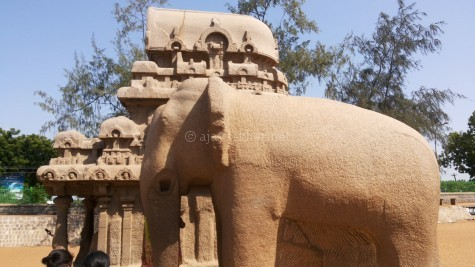 Apsidal or Gajaprishta shrine and the Gajotama the full size elephant, both carved out of monoliths at Mamallapuram site called Five Chariots. Aug 2015