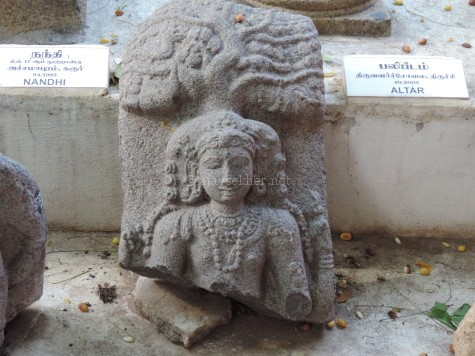 Dakshinamurty fragment in Tiruchirapally Govt Museum, showing remarkable similarities with the above Buddha with the Bodhi tree and hairdo indicating the appropriation of Buddhist iconography into Saivite art in Tamilakam