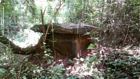 Dolmens revealed from under a heap of red soil at Mupuzha in Palakad.