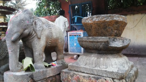 Elephant image is a key icon of the Buddha as Gajotama or Vinayaka as he is represented by Asoka at Dhauli.  Lotus petal motifs on altar and lamp posts are also relics of Buddhist iconography. Dhamma Simhas and Gajas; ethical lions and elephants are everywhere in Kerala temples, especially at the baseline of altars and sanctums.  Pic from Panachikal Kavu at Vaikam temple.
